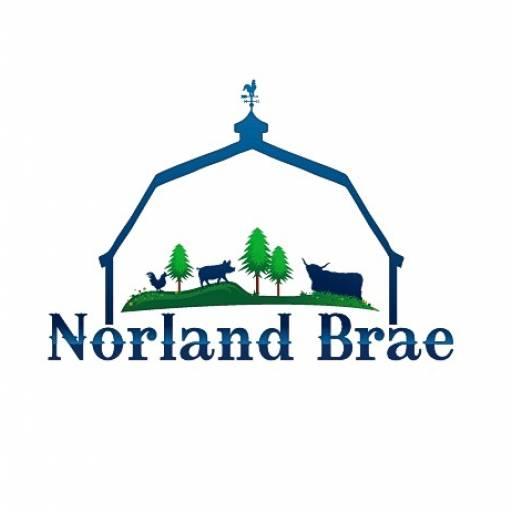 Norland Brae