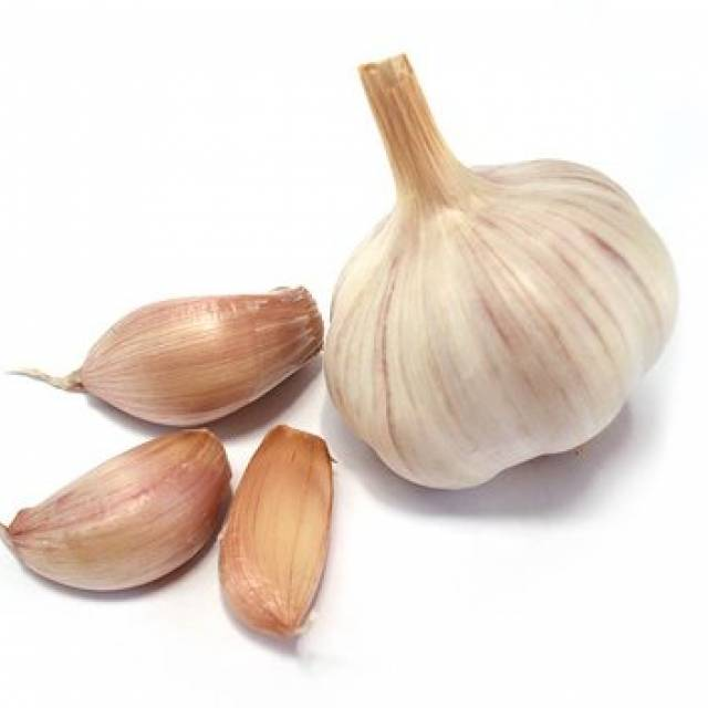 LARGE Garlic Bulbs