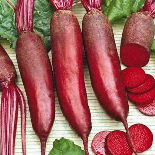 Beets, Cylinder